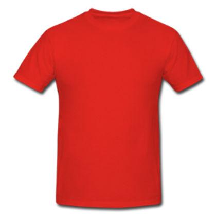 Мъжка тениска супер цена С111